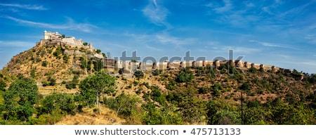 Panorama fort Indië reizen panoramisch oude Stockfoto © dmitry_rukhlenko