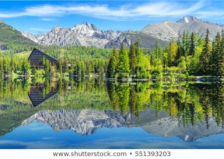 Meer Slowakije landschap hoog natuur reizen Stockfoto © borisb17