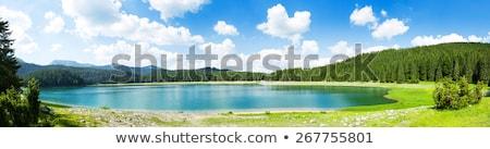 Panorâmico paisagem lagoa verão Rússia céu Foto stock © Mikko