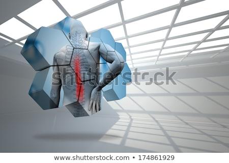 Gris cuerpo digital esqueleto músculos salud Foto stock © wavebreak_media