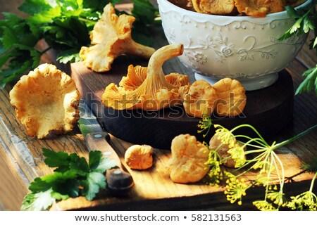 Mushroom Foray Stock photo © gemenacom