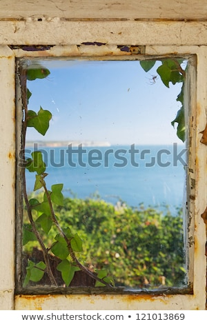 View of the sea through an ivy covered window frame Stock photo © lucielang