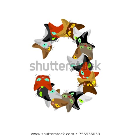 Number 3 cat font. Cats number three. Pet alphabet sign. home an Stock photo © MaryValery
