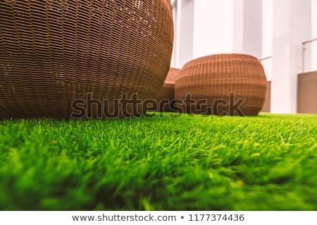 A light green artificial grass mat Stock photo © Zerbor