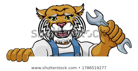 Cartoon lynx illustratie welp dier top Stockfoto © cthoman