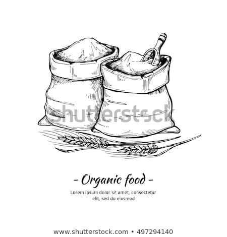 Grains Sack Sketch Illustration Stock photo © lenm
