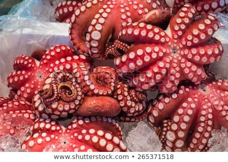 осьминога рыбы рынке морепродуктов продажи Сток-фото © dolgachov