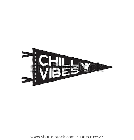 Vintage surf pennant print design for t-shirt and other uses. Chill Vibes typography quote calligrap Stock photo © JeksonGraphics