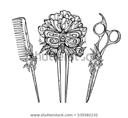 Vintage волос Pin моде антикварная ювелирные Сток-фото © FOKA
