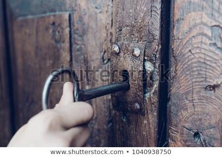 старомодный двери старые Вильнюс улице Литва Сток-фото © joyr