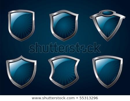 Kék fényes fényes pajzs illusztráció védelem Stock fotó © Krisdog