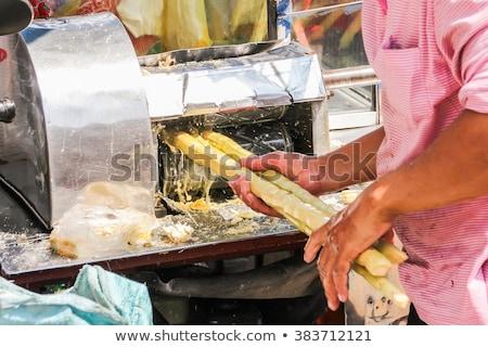 Sugarcane Press Stock photo © ildi