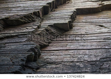 Natural shale rock Stock photo © homydesign