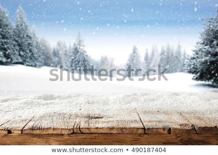 Winter background. Dirty snow. Stock photo © linfernum