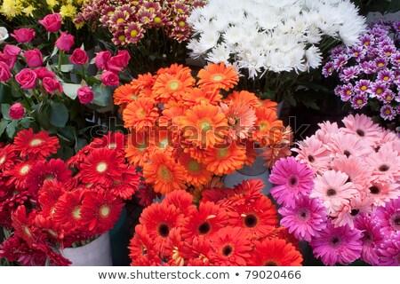 Rozen markt verkoop bloemen steeg natuur Stockfoto © kawing921