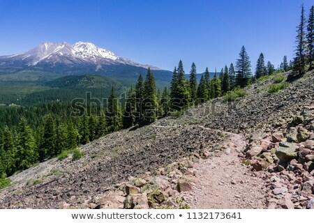 Mount Shasta valley, North California, USA stock photo © snyfer
