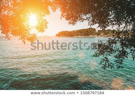 Sunny Embankment in Porec, Croatia Stock photo © anshar