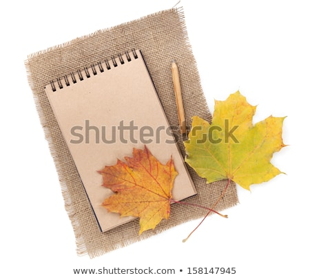autumn leaves over old paper retro background stock photo © marinini