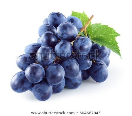 Ripe blue grape isolated Stock photo © Givaga