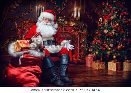 サンタクロース 暖炉 陽気な クリスマス 屋根 漫画 ストックフォト © adrenalina