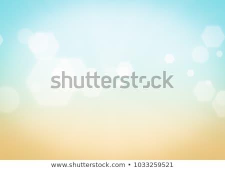 Természet napos absztrakt nyár nap bokeh Stock fotó © karandaev