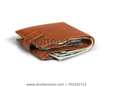 Marrom couro carteira isolado financiar pele Foto stock © shutswis