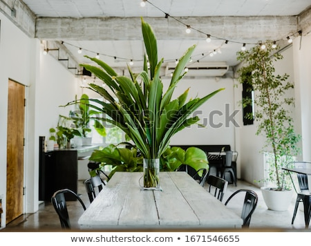 a big house with plants stock photo © bluering