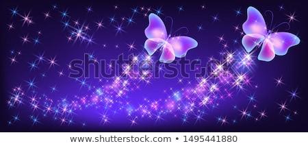 brillante · noche · mariposas · resumen · diseno - foto stock © blackmoon979
