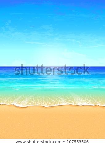 Deniz manzarası cennet plaj deniz martı ışık Stok fotoğraf © fresh_5265954