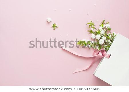 春の花 ピンクリボン 勾配 イースター 花 ストックフォト © barbaliss