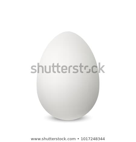 реалистичный · белый · яйцо · тень · продовольствие · куриные - Сток-фото © olehsvetiukha