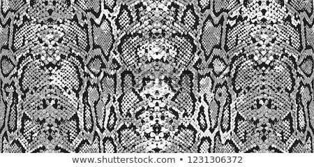 устрашающий ткань текстуры шаблон дизайна занавес Сток-фото © SArts