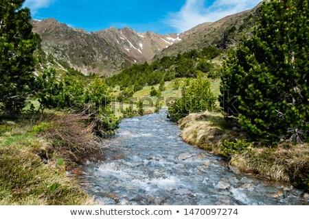nehir · kar · çalışma · aşağı · dağ - stok fotoğraf © Mps197
