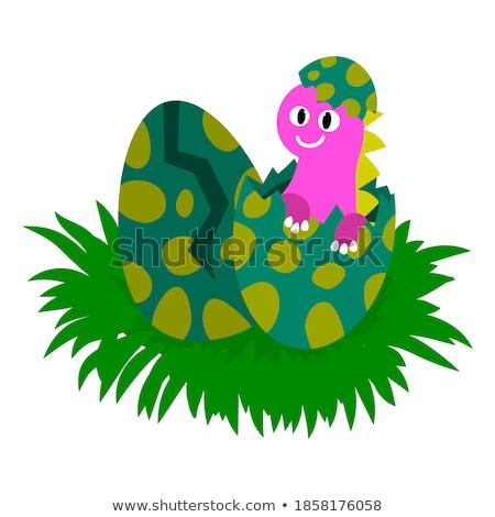 Dinossauros ovos branco ilustração fundo tropical Foto stock © colematt