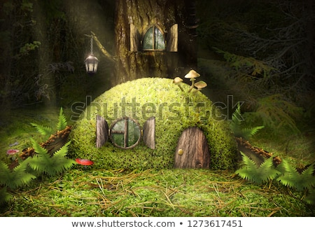 Enchanted mushroom wooden house Stock photo © colematt