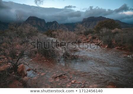 çöl sahne yağmurlu gün örnek gökyüzü Stok fotoğraf © colematt