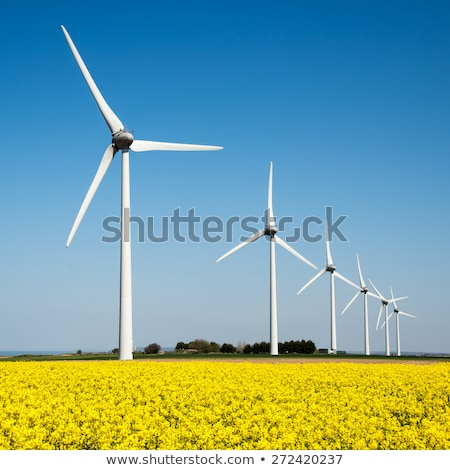 Wind turbines, power lines and flowering rapeseed  Stock photo © elxeneize