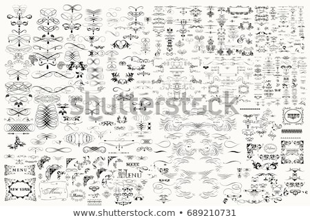Mega collection of vector calligraphic design elements Stock photo © blue-pen