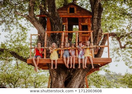 Drzewo domu dzieci zabawy Zdjęcia stock © cr8tivguy