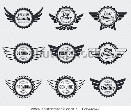 Emblem Badge With Wing Design Foto stock © rtguest