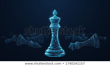 Rey del ajedrez mano fondo poder tarjeta patrón Foto stock © carodi