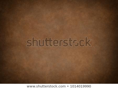 Abstract grunge bruin textuur hout kunst Stockfoto © Kheat