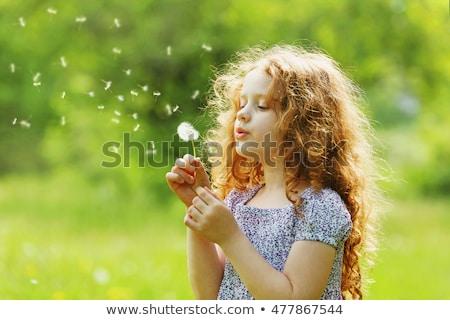 Stock photo: girl blowing dandelion