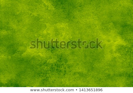 Painted Grass Texture Stock photo © rghenry