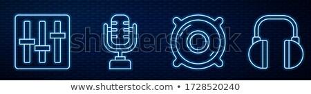 Microphone Icon on the Wall. Stock photo © tashatuvango