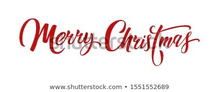 Vidám karácsony szöveg boldog Stock fotó © rioillustrator