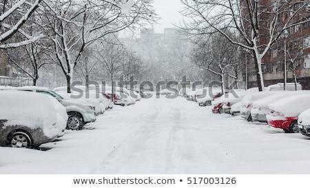 Street covered in snow Stock photo © phakimata