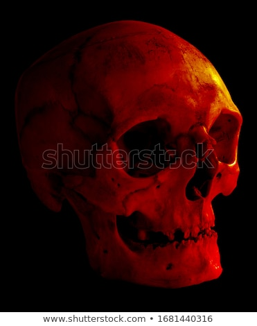 Skull Isolated on black Stock photo © Klinker
