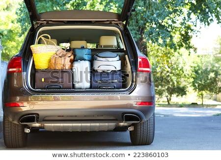 Carro bagagem estrada trio projeto montanha Foto stock © Genestro