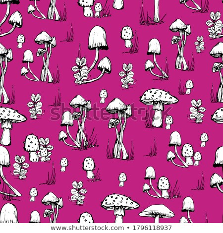 гриб графических рисунок след искусства краской Сток-фото © frescomovie